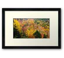 Mohican Autumn Framed Print