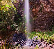 Twin Falls, Summertime by Dean Bailey
