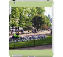 Peaceful haven iPad Case/Skin