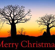 A Kimberley Christmas Card by Mieke Boynton