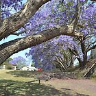 Jacaranda II by Gary Kelly