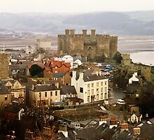 Conwy Castle from the Walls by AnnDixon