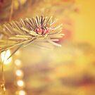 Christmas Time by Ashqtara