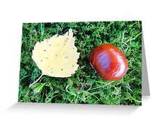 Cute brown chestnut and fall leaf Greeting Card