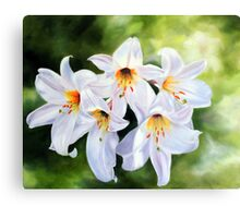 I dreamed of lilies... Canvas Print