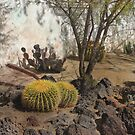 Courtyard Cactus by Gordon  Beck
