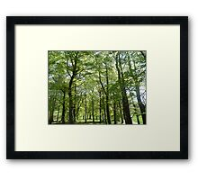 its not that easy being green. Framed Print