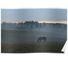 October evening landscape. Norway. Poster