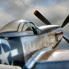 P51 Mustang - Ready for action by © Steve H Clark