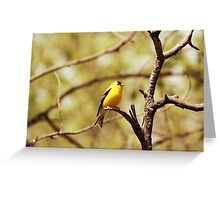 American Goldfinch on a Tree Branch Greeting Card