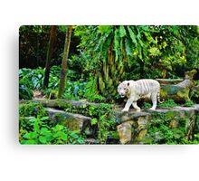 White Tigerrr Canvas Print
