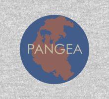 Pangea 2 by Sydney Stevens