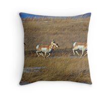Prairie Sprinters! Throw Pillow