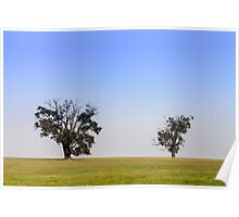 2 Trees Poster