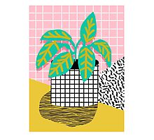 Get Real - potted plant throwback retro neon 1980s style art print minimal abstract grid lines shape Photographic Print