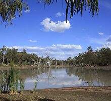 Lake Yarrie Campgroung by myraj
