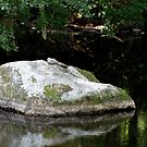 The Stone In The Lake by ArtOfE