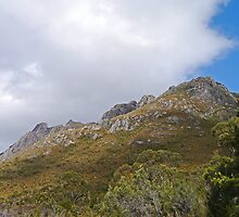 Mt Wedge, Southwest National Park, Tasmania, Australia by Margaret  Hyde