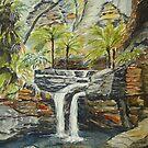 Moss Garden, Carnarvon Gorge, Queensland by Virginia  Coghill