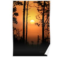 Foggy Day Sunrise Poster