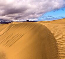 Sand & Sky by vivsworld