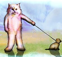 cats and dogs by matan kohn