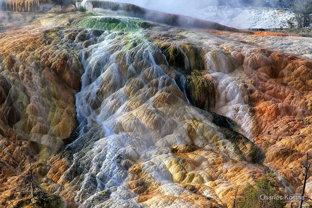 Mammoth Hot Springs at Yellowstone by Charles Kosina