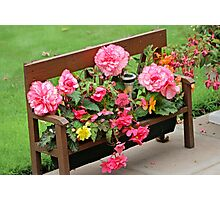 Bench full of flowers Photographic Print