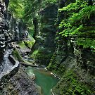 The Gorge Trail by Lori Deiter