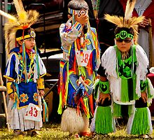 Let the Pow Wow Begin! by Elizabeth Heath