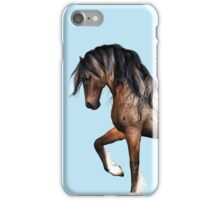 Wild Appaloosa Stallion  iPhone Case/Skin