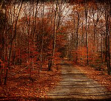 The Road Goes On by PineSinger