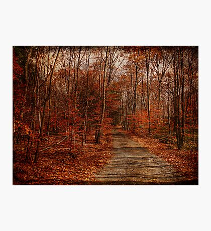 The Road Goes On Photographic Print