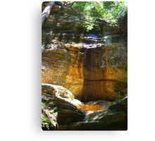 Old Mans Cave - Hocking Hills Ohio Canvas Print