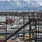 Homer Boat Harbor by yellocoyote