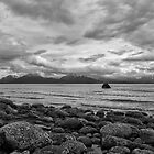 Kachemak Bay by yellocoyote