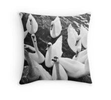 Feeding Frenzy Throw Pillow