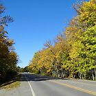 Highway In Fall by WildestArt