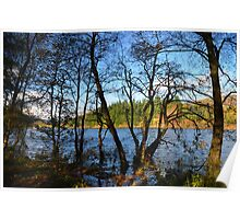 Loch Ard in Autumn Poster