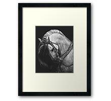 Silver Belle Framed Print