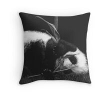 Playing With Food Throw Pillow