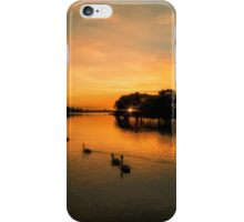 New Forest Sunset iPhone Case/Skin
