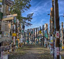 Sign Post Forest by yellocoyote
