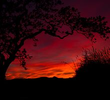 St Blazey Sunset by DianeRocks