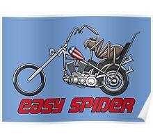 Easy Spider Poster