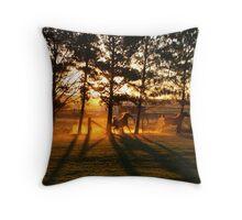 Sunset & Shadows Throw Pillow