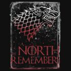 The North Remembers 2   by lab80
