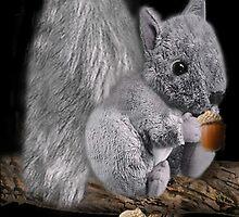 ✿♥‿♥✿MY CUDDLY LITTLE SQUIRREL WITH ACORNS✿♥‿♥✿ by ✿✿ Bonita ✿✿ ђєℓℓσ
