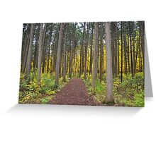 Gold at the end of the forest. Greeting Card