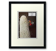 Cactus Climb Framed Print
